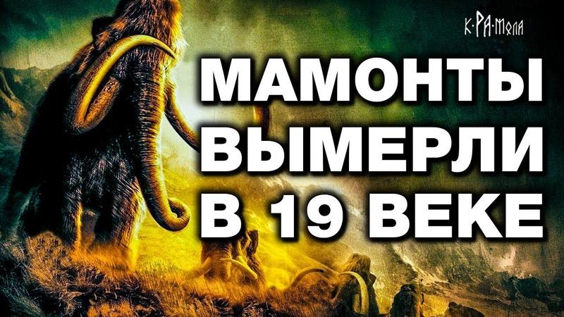 ИСТОРИКИ СНОВА НАМ НАВРАЛИ. 100% Доказательства, что мамонты жили в 19 ВЕКЕ. ВСЕ ЛИ МАМОНТЫ ВЫМЕРЛИ?