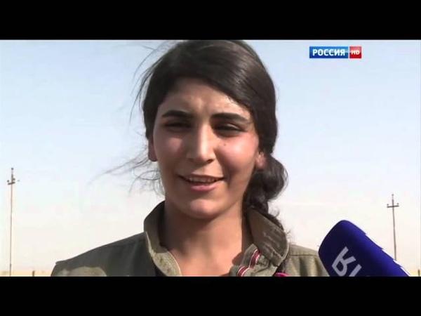 Земля Айлана Курди