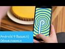 Android 9 Samsung ВЫШЕЛ ОБНОВЛЯЕМСЯ