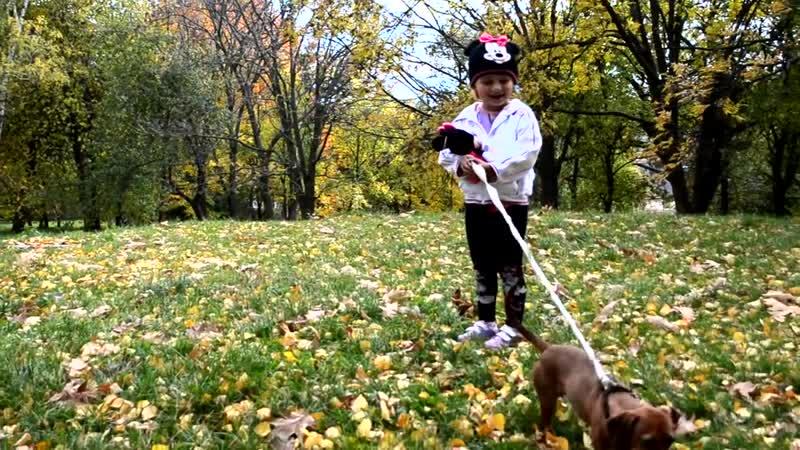 Первый раз на роликах. Стася Mini Maus и ее собака. Songs kids. Fun and games