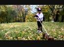 Первый раз на роликах Стася Mini Maus и ее собака Songs kids Fun and games