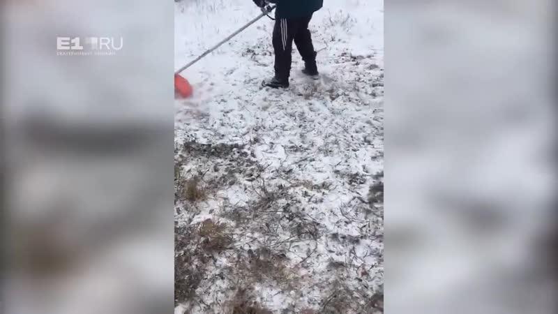 В Свердловской области МЧС-ников заставили косить траву под снегом