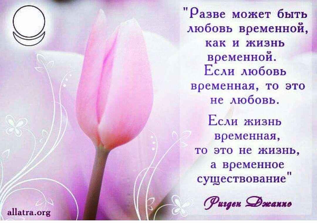 https://pp.userapi.com/c844616/v844616826/24a66/Yc8vun7QtVY.jpg