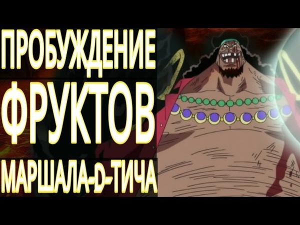 ПРОБУЖДЕНИЕ ФРУКТОВ ЧЁРНОЙ БОРОДЫ || ОН УНИЧТОЖИТ МИР?! || ИСТИННЫЙ ПЛАН ТИЧА || One Piece ТЕОРИЯ