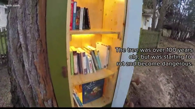 Coeur dAlene artist turns decaying tree into little library