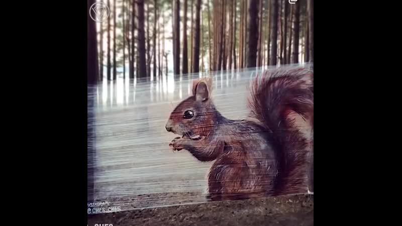 Рисунки животных на плёнке hbceyrb bdjnys yf gk`yrt hbceyrb bdjnys yf gk`yrt hbceyrb bdjnys yf gk`yrt
