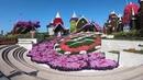 Dubai Miracle Garden (4K Video)