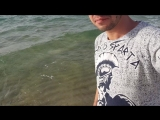 Тунис, море, утро)