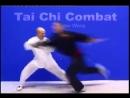 Тайчи боевое применение Мастер Майкл Вонг