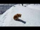 Казбек, моя первая вершина. 50475033 м.