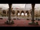 مع خيوط الشمس الذهبية ضحى في مسجد رسول الله صلى الله عليه وسلم