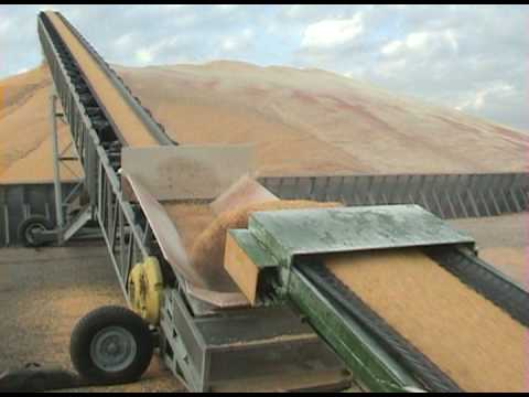 Allatoona's Drive Over Tazz Corn Hog with our 120' Radial Stacking Conveyor