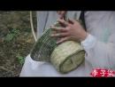 Ли ЦзыЦи - ДЕВУШКА С ХАРАКТЕРОМ! Плетение корзинки. Сезон цветения вишни Нянь ИнХуа Цзи. Чай из цветов вишни ИнХуа Ча Ба