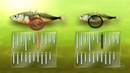 Эволюция трехиглой колюшки — HHMI BioInteractive Video
