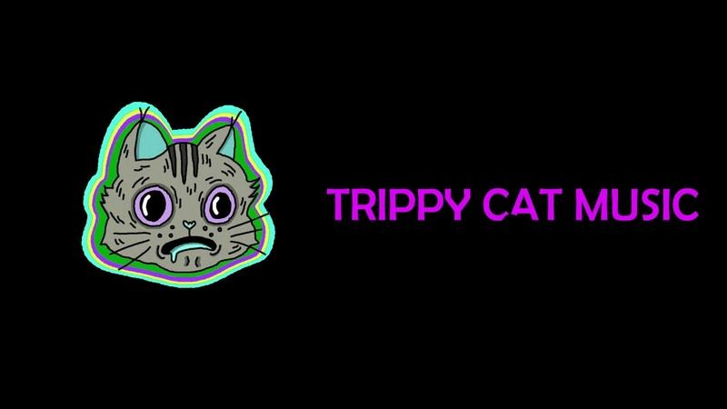 MINIMAL TECHNO FLASH MUSIC 2019 TRIPPY CAT ULTIMATE AFTERHOURS SET