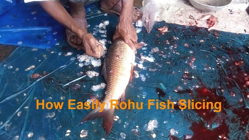 Amazing Rohu Fish Cutting Video | Family Size Rohu Fish Amazingly Slicing by Fishmonger for a Family