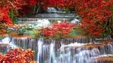 Японская Музыка Для Расслабления, Отдыха И Восстановления Сил Музыка Для Релаксации И Медитации