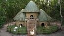 Rescue Wild Rabbits Then Building Disney Castle House for Rabbits
