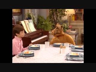 Alf Quote Season 3 Episode 13_Три