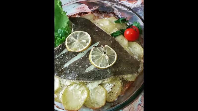 Рыбное Изобилие mp4