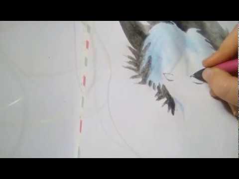 Как нарисовать Куро из аниме Сервамп(Слуга вампир)