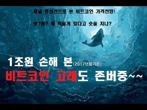 1조원 손해 본 비트코인 고래도 존버중~~(2017년말기준) 채널 중심선으로 본 비트530