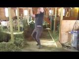 Jay Lavery - Dancing Farmer