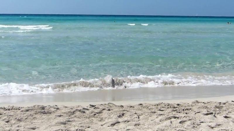 Salento Gallipoli il suo mare la sua spiaggia Puglia italia baia verde