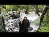 Муж и жена создали тропический лес на месте заброшенных земель SAI Sanctuary