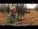 Охота на зайца в Якутии