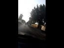 Елена Каменская - Live