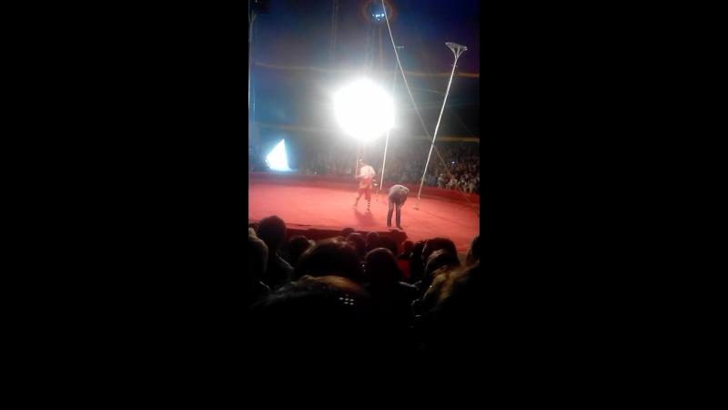 цирк. клоун