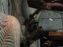 Ленивцы 12 апр