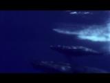 Sarah Brightman- Captain Nemo
