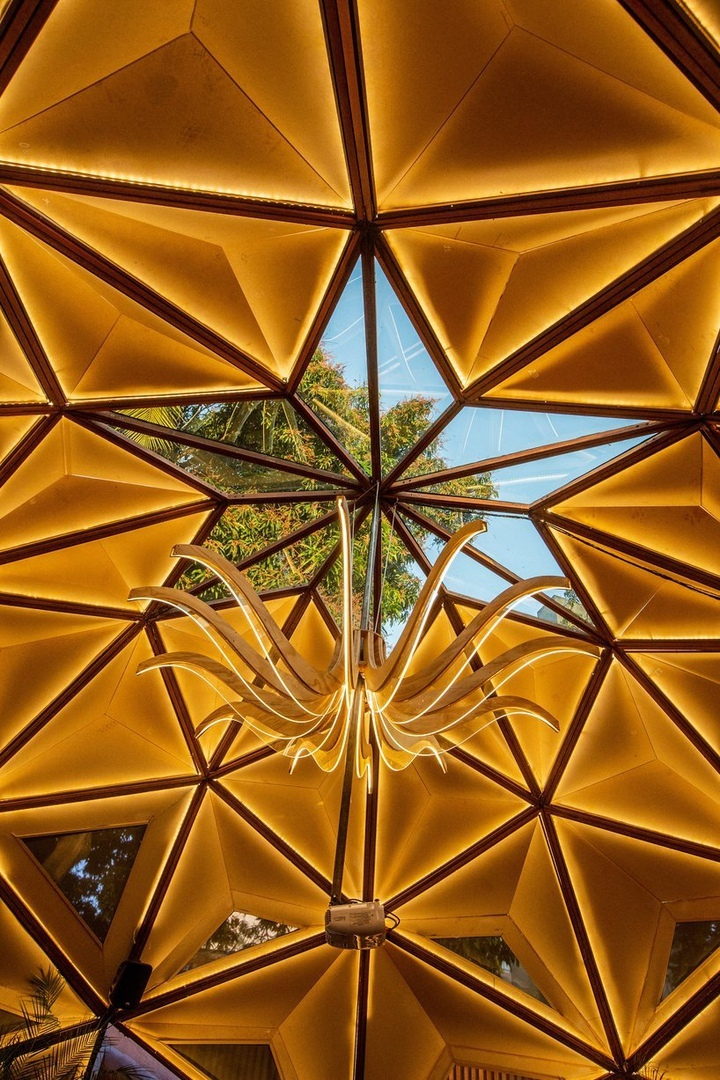 Parametric dome-shaped arena in Brazil by Selvagen is based on the structure of a tree
