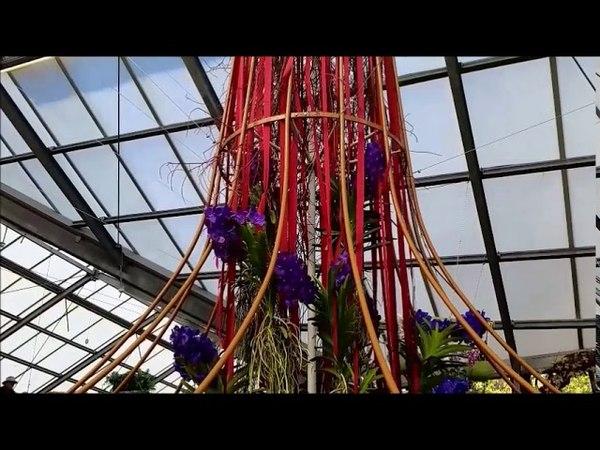 дом Беатрис - Орхидея .... Beatrix ház - Orchidea