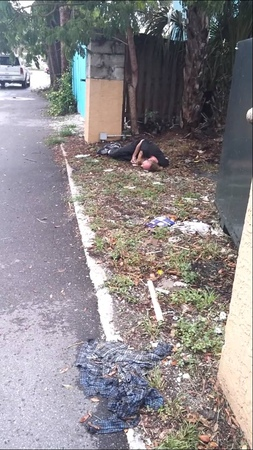 Sarasota homeless on flakka