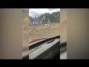 В Башкирии чиновники приказали бульдозерами разрыть кладбище с останками воинов Великой Отечественной Войны