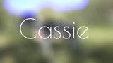border collie Cassie ~ tricks &amp frisbee