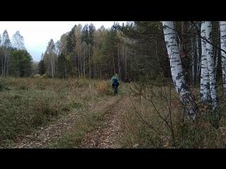 По дороге на Тургояк