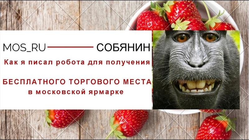 Как сделать робота для получения торгового места в Москве на Imacros