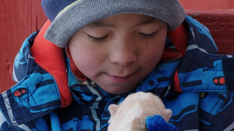 What It's Like to Grow Up on the Greenland Tundra | Op-Docs