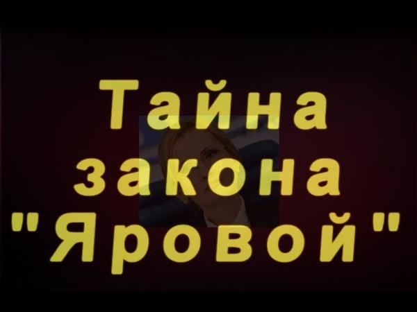 Тайна закона Яровой Павел Карелин