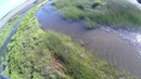 BIG CROC in LAMA LAMA LAND CAPE YORK Огромный крокодил в реке Лама Лама Ленд Мыс Йорк Австралия