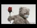 Miwka Teddija ljublju tebja