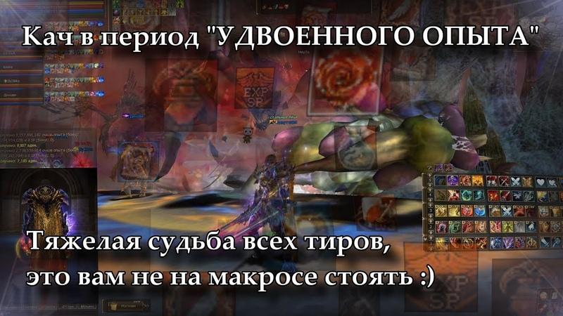 Кач или что происходит когда идет период УДВОЕННОГО ОПЫТА Lineage 2 Russia Orfen Айрин