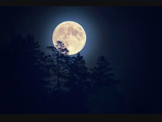 Гаятри мантра Чандры (Луны). Chandra (Moon) mantra. Gayatri mantra. Мантра для у