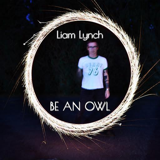Liam Lynch альбом Be an Owl