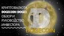 Криптовалюта Dogecoin DOGE обзор и руководство инвестора