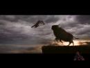 Смотреть новинки кино 2018. Фильм премьера Альфа. Alpha онлайн в высоком качестве HD триллер боевик драма трейлер abkmv fkmaf